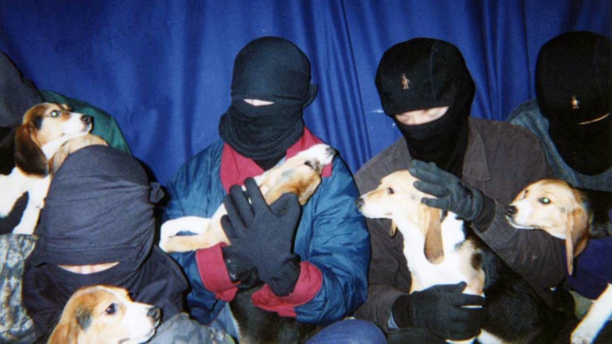 Masked members of the Animal Liberation Front holding dogs